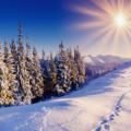 Κυριακή πρό τῆς Χριστοῦ γεννήσεως